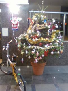 毎年恒例の楽しいお飾りです。