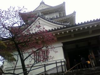 小田原城!