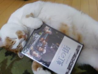 DVDできたにゃあ